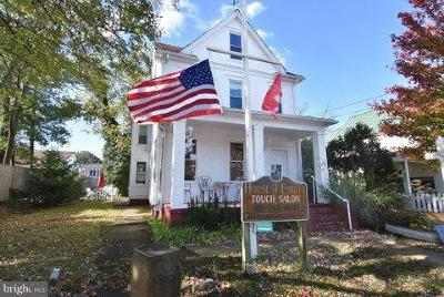 Anne Arundel County, Calvert County, Charles County, Prince Georges County, Saint Marys County Commercial For Sale: 422 6th Street