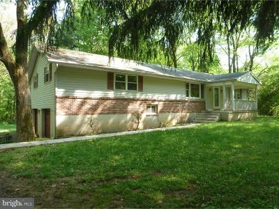 Sellersville PA Single Family Home For Sale: $385,000