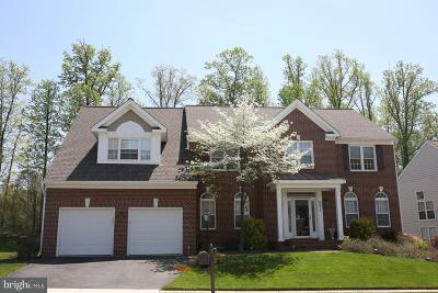 Centreville Single Family Home For Sale: 5211 Tulip Leaf Court
