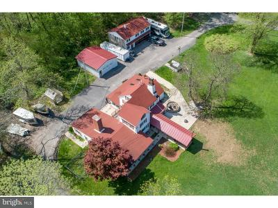 Upper Black Eddy PA Single Family Home For Sale: $1,500,000