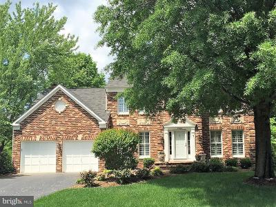 Fairfax County Single Family Home For Sale: 13602 White Stone Court