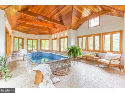 Doylestown Single Family Home For Sale: 2840 Stover Trail
