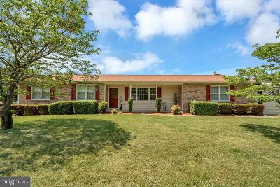 Fredericksburg Single Family Home For Sale: 242 North Randolph Road