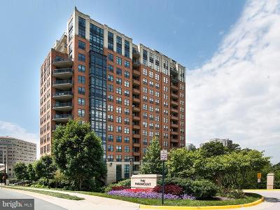 Reston, Herndon Single Family Home For Sale: 1830 Fountain Drive #307