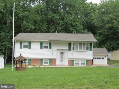 Hughesville Single Family Home For Sale: 14140 Robey Drive