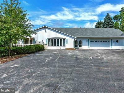 Spring Grove Single Family Home For Sale: 256 Little Creek Road