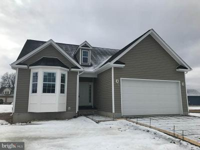 Hedgesville Single Family Home For Sale: Ridge Road N
