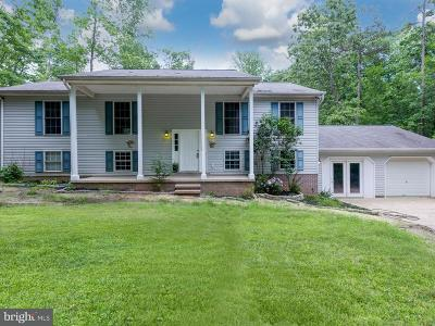 Single Family Home For Sale: 12579 Bristersburg Road