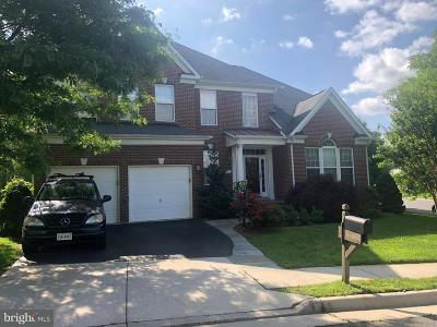 Leesburg Single Family Home For Sale: 710 Tonquin Place NE
