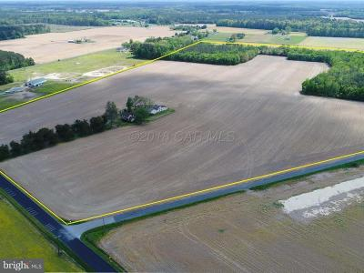 Wicomico County Farm For Sale: 3790 St Lukes Road