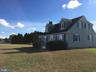 Somerset County, Wicomico County, Worcester County Farm For Sale: 23821 Ocean Gateway