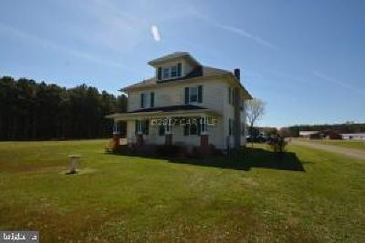 Wicomico County Farm For Sale: 32403 E Line Road