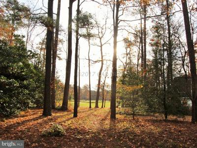 Ocean Pines Residential Lots & Land For Sale: 38 Brandywine Drive