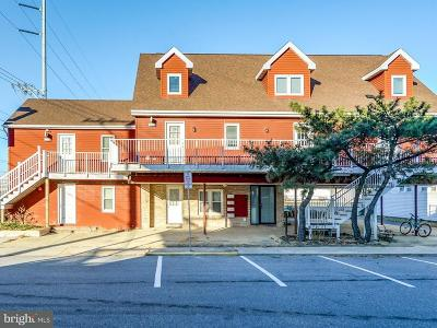 Ocean City Multi Family Home For Sale: 7200 Coastal Highway
