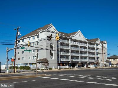 Ocean City Single Family Home For Sale: 2101 Philadelphia Avenue #405