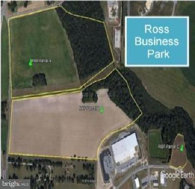 Seaford Residential Lots & Land For Sale: Business Park