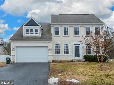 Berlin Single Family Home For Sale: 497 Dueling Way
