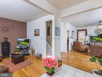 Berlin Single Family Home For Sale: 507 Dueling Way