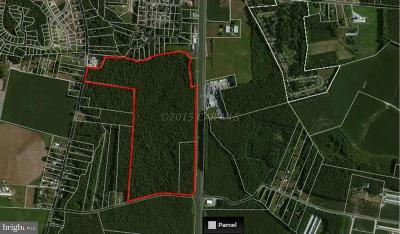 Delmar Residential Lots & Land For Sale: Us Rt. 13 & W. Snake Road