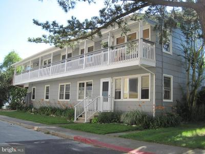 Ocean City Single Family Home For Sale: 508 Edgewater Avenue