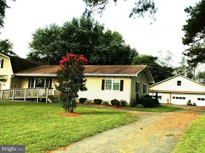 Pocomoke City Single Family Home For Sale: 4749 Owl Hollow Lane