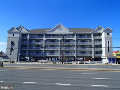 Ocean City MD Condo For Sale: $325,000