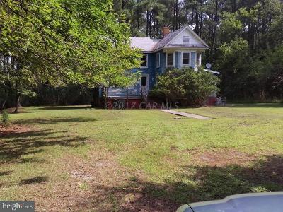 Crisfield Single Family Home For Sale: 26280 Stouty Sterling Road