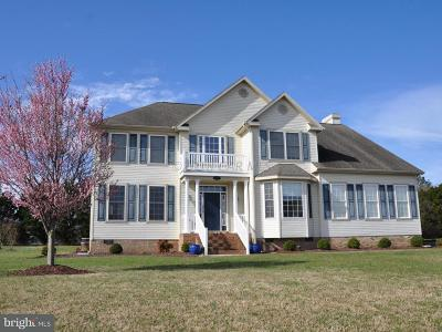 Pocomoke City Single Family Home For Sale: 2009 Orchard Drive