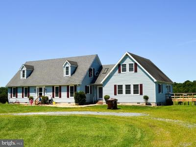 Salisbury Single Family Home For Sale: 6390 Walston Switch Road