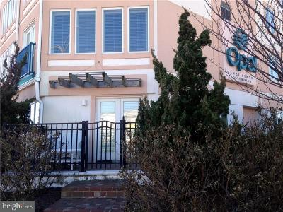 Dewey Beach Condo For Sale: 1609 Coastal Highway #S105
