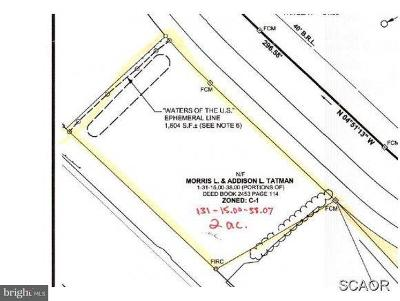 Bridgeville Residential Lots & Land For Sale: Sussex Highway