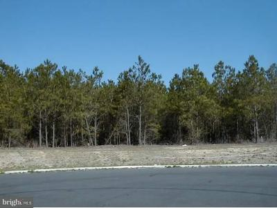 Sussex County Residential Lots & Land For Sale: 24747 Millpond Lane