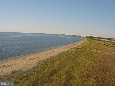 BROADKILL BEACH Residential Lots & Land For Sale: 2848 S Bay Shore Drive