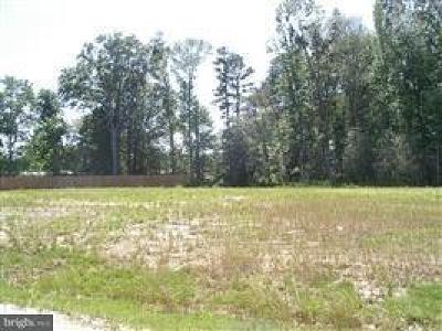Residential Lots & Land For Sale: 28537 W Springside Drive #22