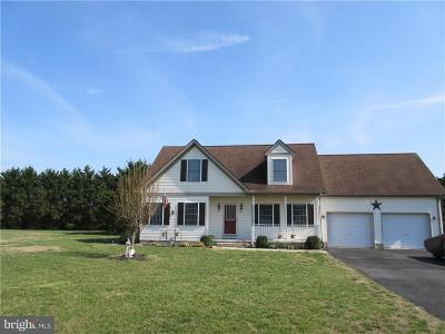 Sussex County Single Family Home For Sale: 4 Brooke Haven