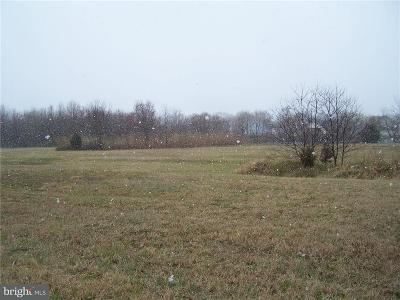Greenwood Residential Lots & Land For Sale: 12500 Sussex Highway