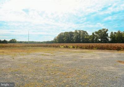 Greenwood Residential Lots & Land For Sale: 116 Draper Street