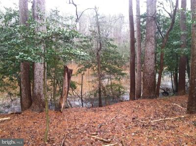 Sussex County Residential Lots & Land For Sale: Lot #30 Wandering Lane