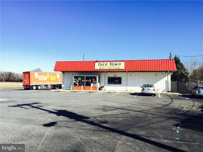 Sussex County Commercial For Sale: 34051 Dupont Boulevard