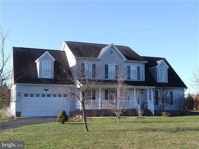 Sussex County Single Family Home For Sale: 8960 Bacons Road