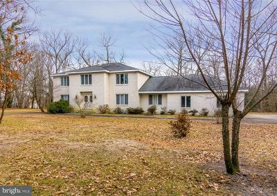 Seaford Single Family Home For Sale: 248 N Shore Court