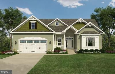 Georgetown Single Family Home For Sale: Blackberry Drive