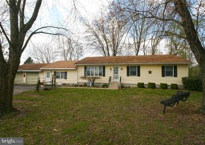 Laurel Single Family Home For Sale: 12083 County Seat Highway