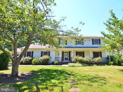 Rehoboth Beach Single Family Home For Sale: 29 W Side Drive