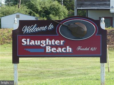 Slaughter Beach Residential Lots & Land Under Contract: Lot 45 Cedar Beach E Side Hwy 204