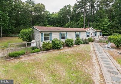 Georgetown Single Family Home Under Contract: 17036 Horse Haven Road