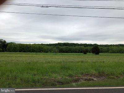 Bucks County Commercial For Sale: Bedminster Road
