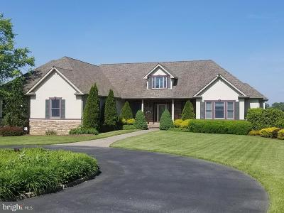 Cumberland County Single Family Home For Sale: 53 Husted Station Road