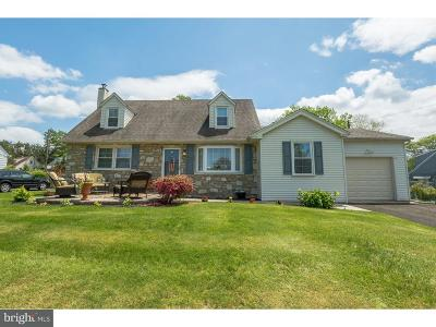 Huntingdon Valley Single Family Home For Sale: 3171 Kathy Lane