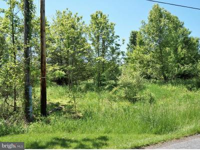 Dillsburg Residential Lots & Land For Sale: 410 S Fileys Road #LOT 4
